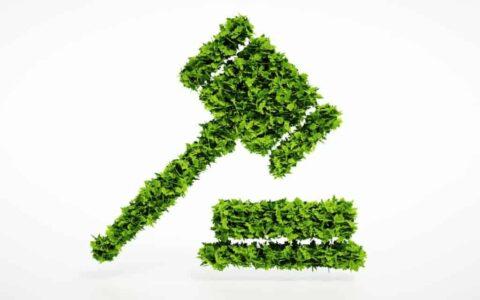 ambiental imagen